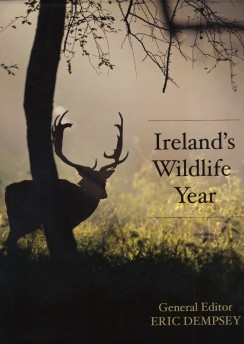 Irelands Wildlife Year
